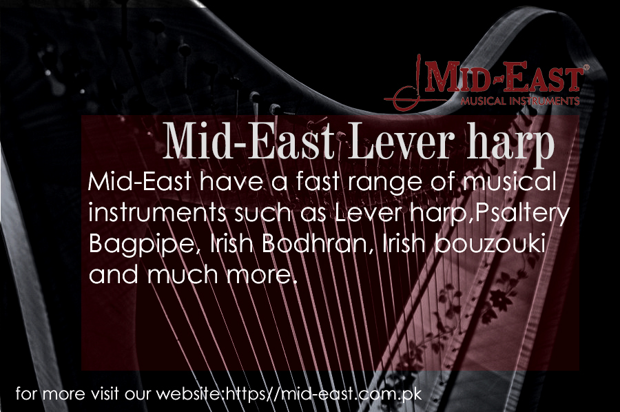 Lever harp in Pakistan
