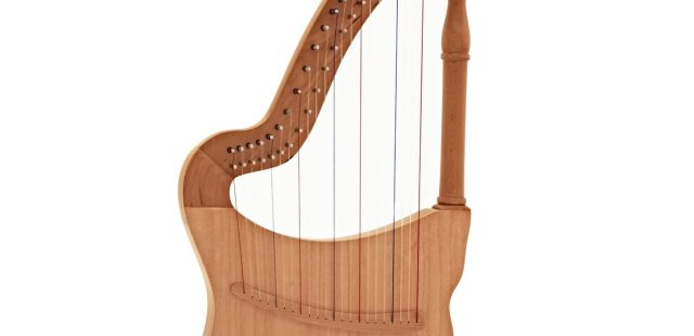 Lute Harp A True Combination