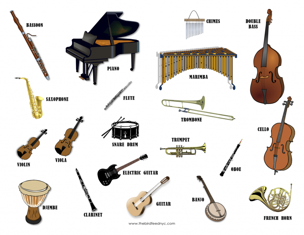 What are the Types of Musical Instrument