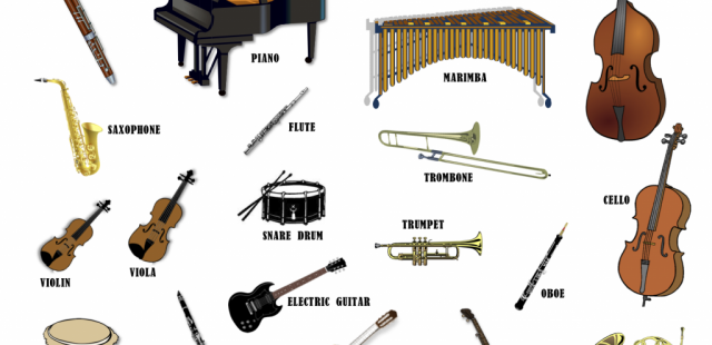 What are the Types of Musical instruments?